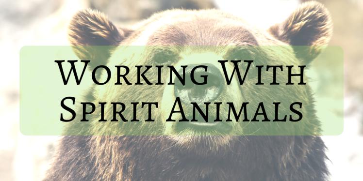 Working With Spirit Animals